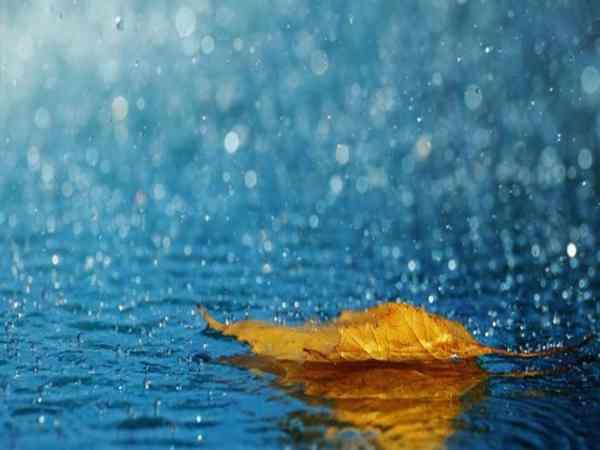 Nằm mơ thấy mưa là điềm gì, đánh con gì?